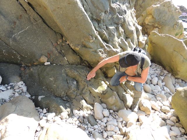 Membre des Marnes glauconieuses sombres reposant sur l'Upper Greensand albien
