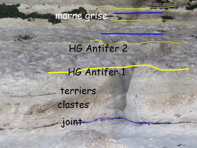 Antifer 1
