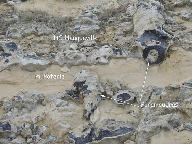 Marne Poterie et HG Heuqueville traversés par des paramoudras