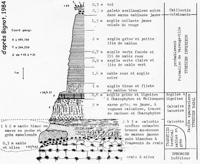 Tertiaire du flanc Est de l'escalier de Sotteville, d'après Bignot (1984)