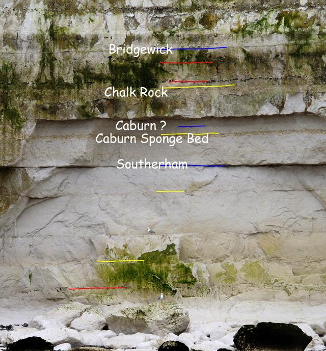 Base de la falaise