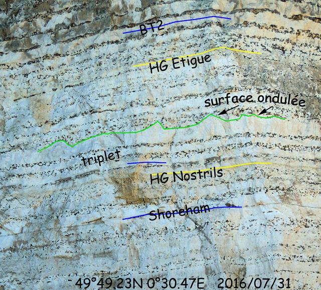 Coupe 30.47'E - Zoom sur la partie moyenne de la falaise
