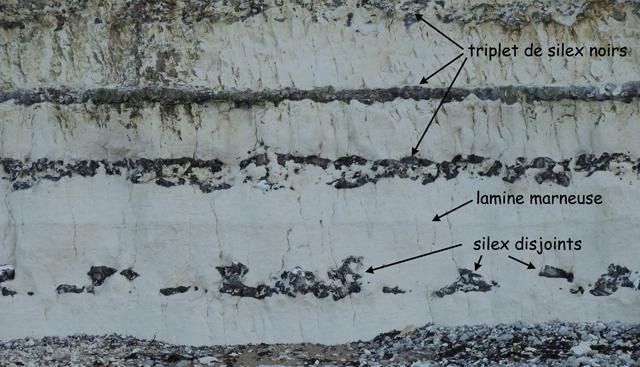 Seismite 1 de Grainval 49°45.0618N 0°20.7861E