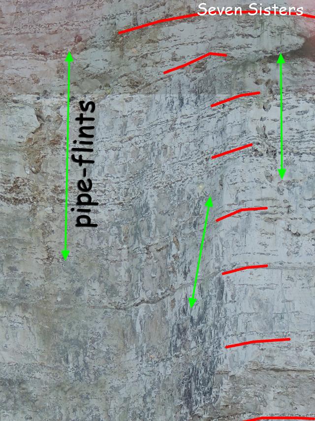 Détail du sommet du Coniacien moyen, montrant des pipe-flints de plusieurs mètres de longueur
