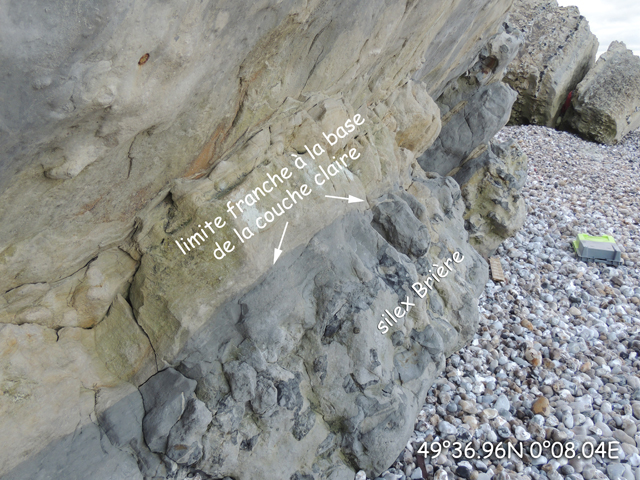 La couche claire Tronquay au-dessus du silex Brière