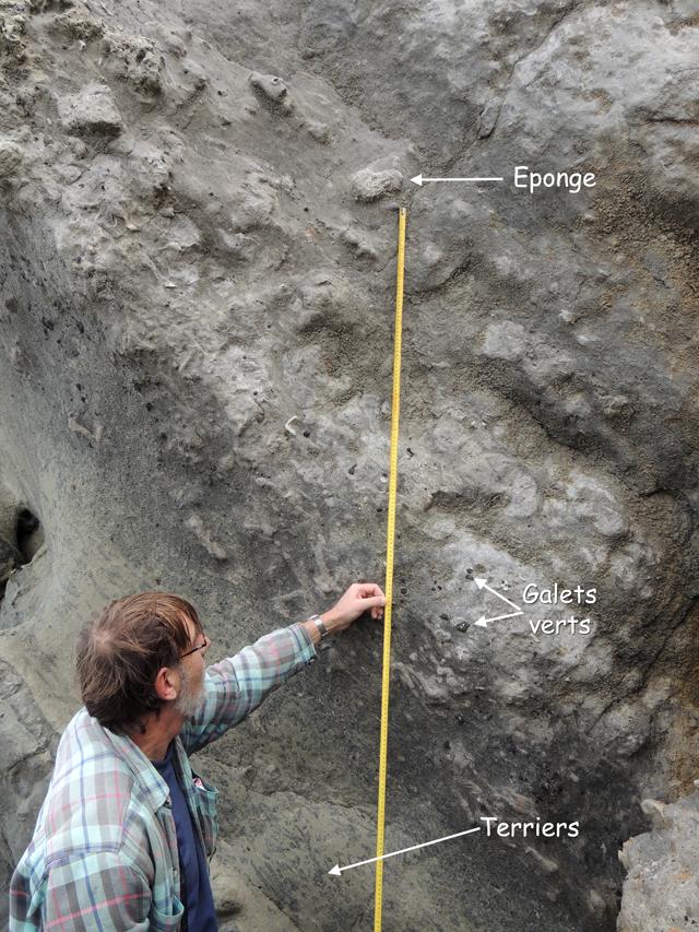 Base du Cénomanien - 1 mètre au niveau du pouce