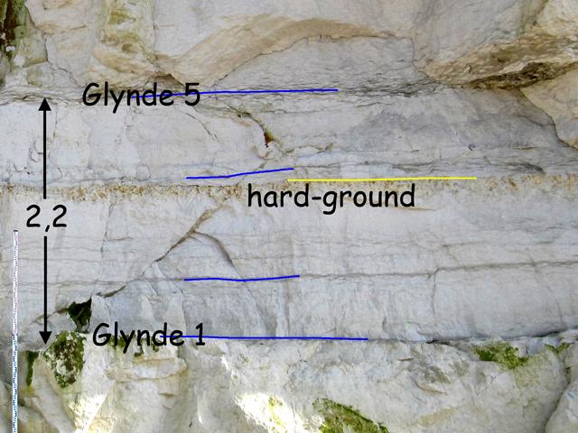 Coupe 1°20.75'E - niveaux marneux Glynde à la base