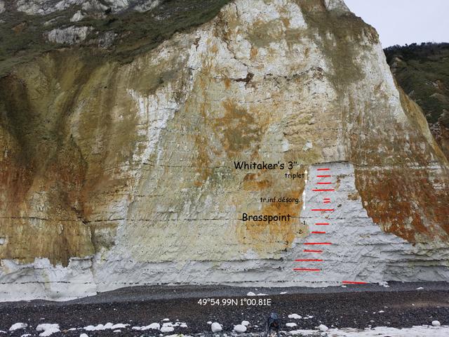 Coupe 49°54.99N 1°00.81E, en face du platier à Cladoceramus