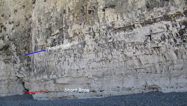 Base falaise Veules