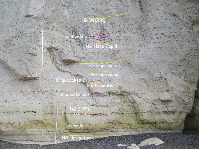 partie inférieure du Coniacien inférieur