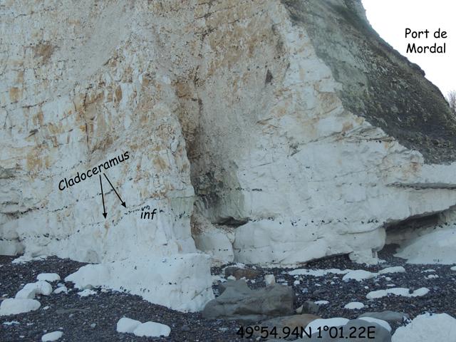 Port de Mordal et niveau à Cladoceramus
