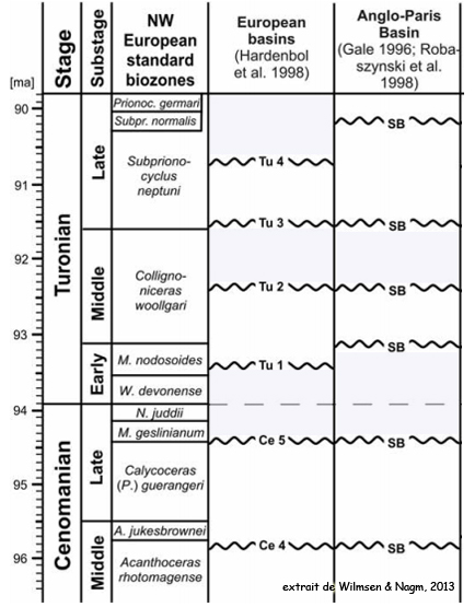 Stratigraphie séquentielle du Turonien du Bassin Anglo-Parisien - extrait de Wilmsen et Nagm (2013)