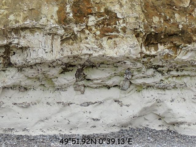 Silex verticaux - séismite Câtelier - coupe 49°51.92N 0°39.13'E