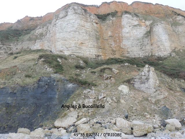 Coupe au Nord de la valleuse de Cauville avec à la base les Argiles à Bucaillella