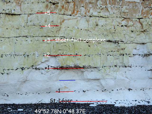 Sheet-flints entre marne Anglesqueville et silex Exceat