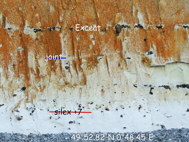 Sous le silex Exceat, en 49°52.82'N 0°48.45'E