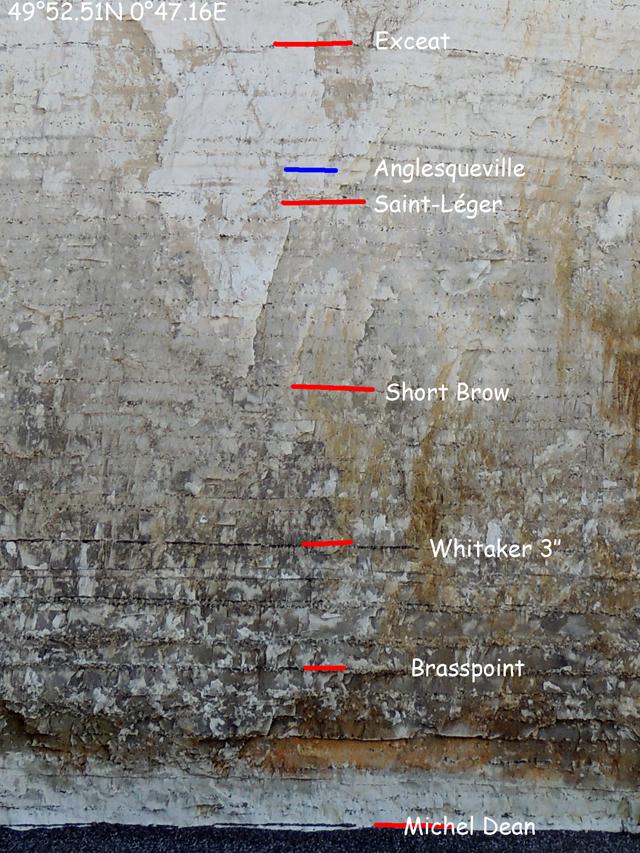 Coupe 47.16E Le sextuor de silex du Santonien inférieur et moyen