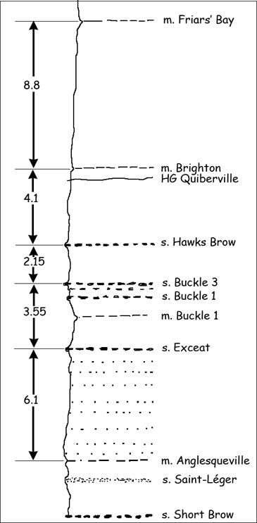 Log stratigraphique de la coupe de Veules-les-Roses à Sotteville (La Pointue)