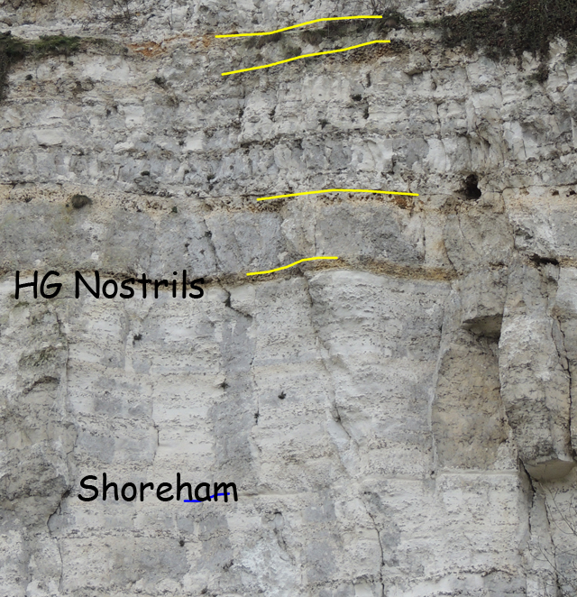Plan rapproché sur la Marne Shoreham