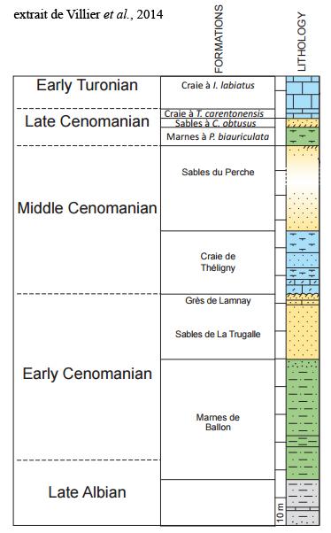 Coupe du Cénomanien de la région du Mans extraite de Villier et al., 2014 ( à 165 km au S du Havre) montrant l'apparition du faciès craie, fugace au Cénomanien inférieur, marqué à la fin du Cénomanien