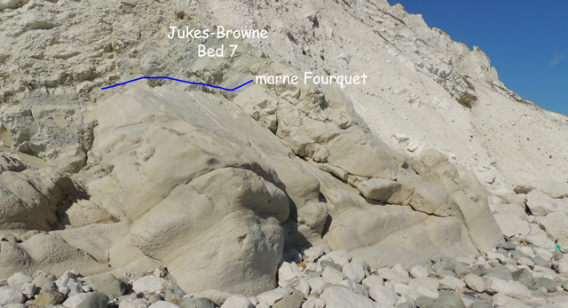 Jukes-Browne Bed 7