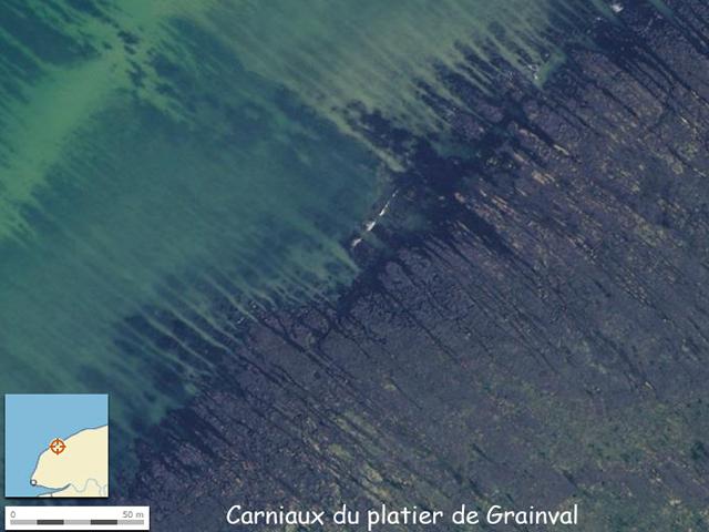 Photographie aérienne (source IGN) du platier de Grainval montrant les carniaux perpendiculaires au trait de côte
