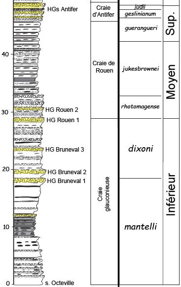 Découpage stratigraphique du Cénomanien du Pays de Caux