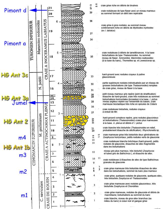 Le passage Cénomanien - Turonien, d'après L. Morel (1998). Les repères colorés ajoutés sont ceux représentés sur les clichés de ce site.