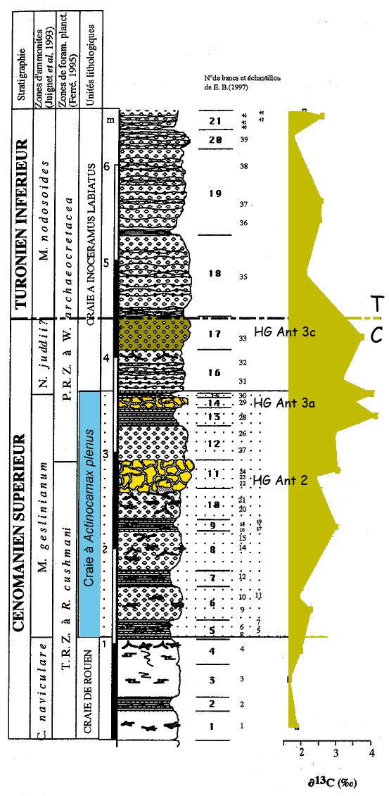 Variation du Carbone 13