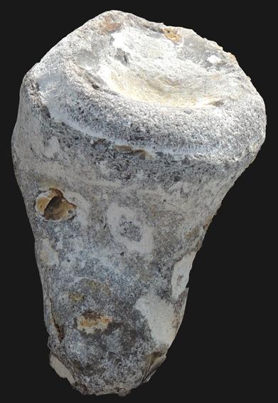 Eponge siliceuse fossilisée sous forme de silex, en galet sur la plage d'Ignauval