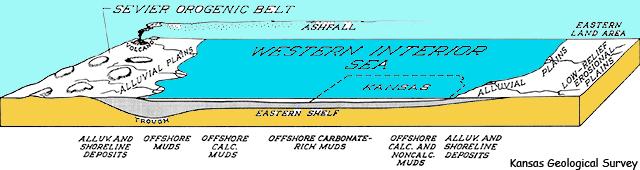 Coupe du Bassin du Western Interior (Craie de Smoky Hill ou de Niobrara) d'après le Kansas Geological Survey